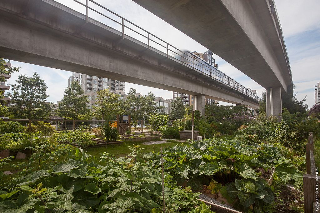 Translink, Community Gardens, Vancouver BC